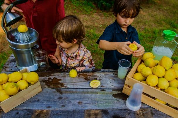 Local Lemonade Stand