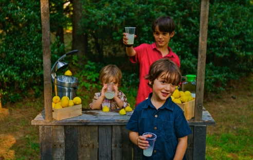 Locally Sourced Lemonade Stand