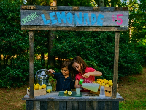 Local Lemonade Stand