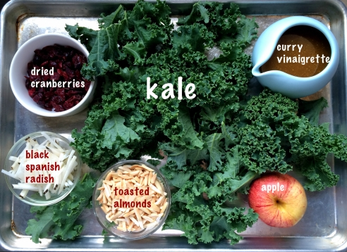 rsz_apple_kale_salad_3